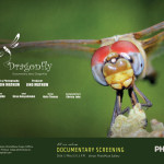 Dragonfly-documentary