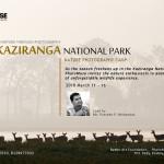 KAZIRANGA-CAMP-2018-POSTER-FINAL