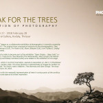 I-speak-for-the-trees-_Exhibition-copy