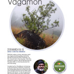 twm-vagamon-new-copy
